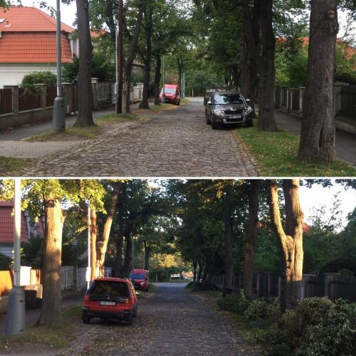 rez-stromu-5
