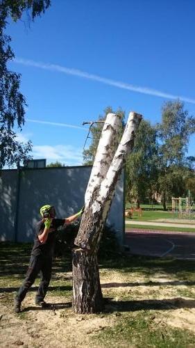 rizikove-kaceni-stromu-7